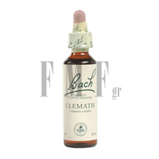 POWER HEALTH Bach No.09 Clematis - 20 ml.